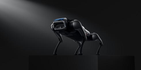 中国Xiaomiが犬型ロボット「CyberDog」発表 価格は17万円、他社類似モデルの50分の1  [ひよこ★]
